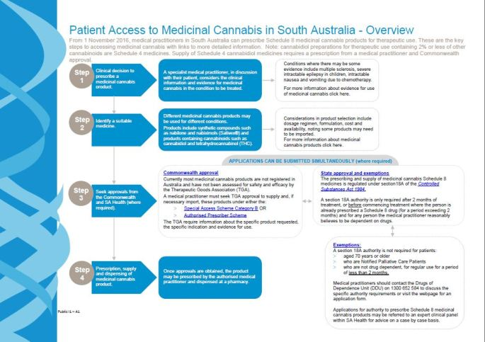 medical marijuana pathway